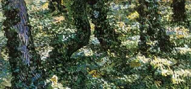 Van Gogh a Milano, Palazzo Reale