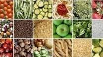 Alimentazione: mostra Food a Milano