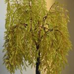 In foto un bonsai realizzato con perline e legno da Myriam Collini Maraziti.