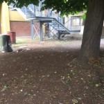 Cossa. Il cortile da cui è stato lanciato il legno.